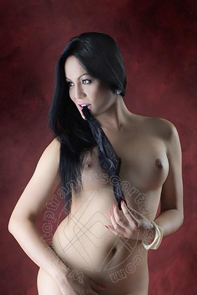 Angelika Asiatica  CREMONA 324 5611031
