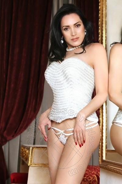 Reina Sofia  CASTELFRANCO VENETO  347 8855255