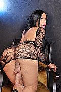 Latina Trans Escort Celeste New 351 1837392 foto hot 5
