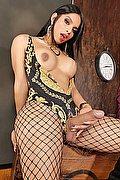 Latina Trans Escort Celeste New 351 1837392 foto hot 6