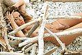 Villa Rosa Trans Escort Giselly  Bella 348 8233061 foto hot 11